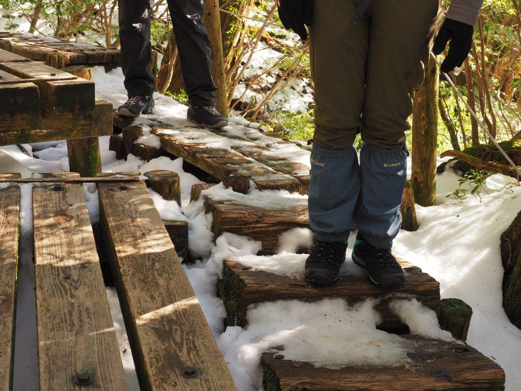 縄文杉コースの残雪