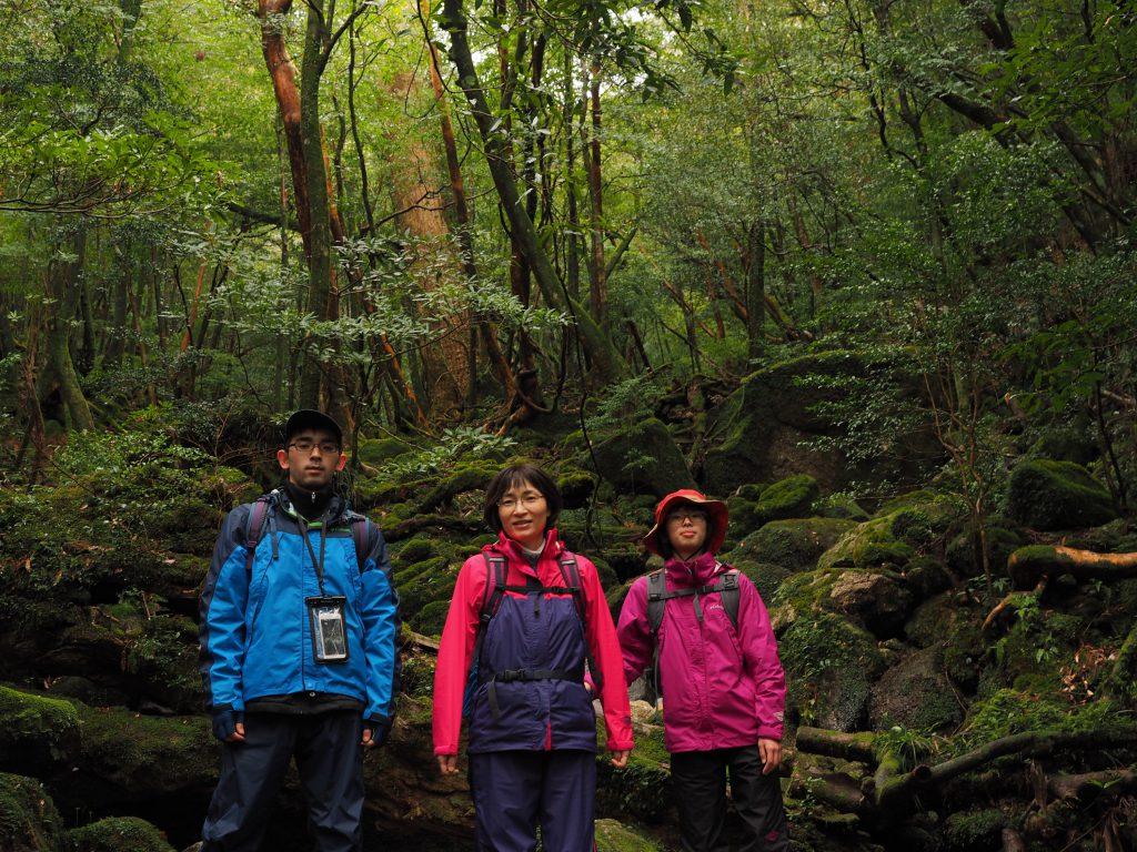 白谷雲水峡の奉行杉コース