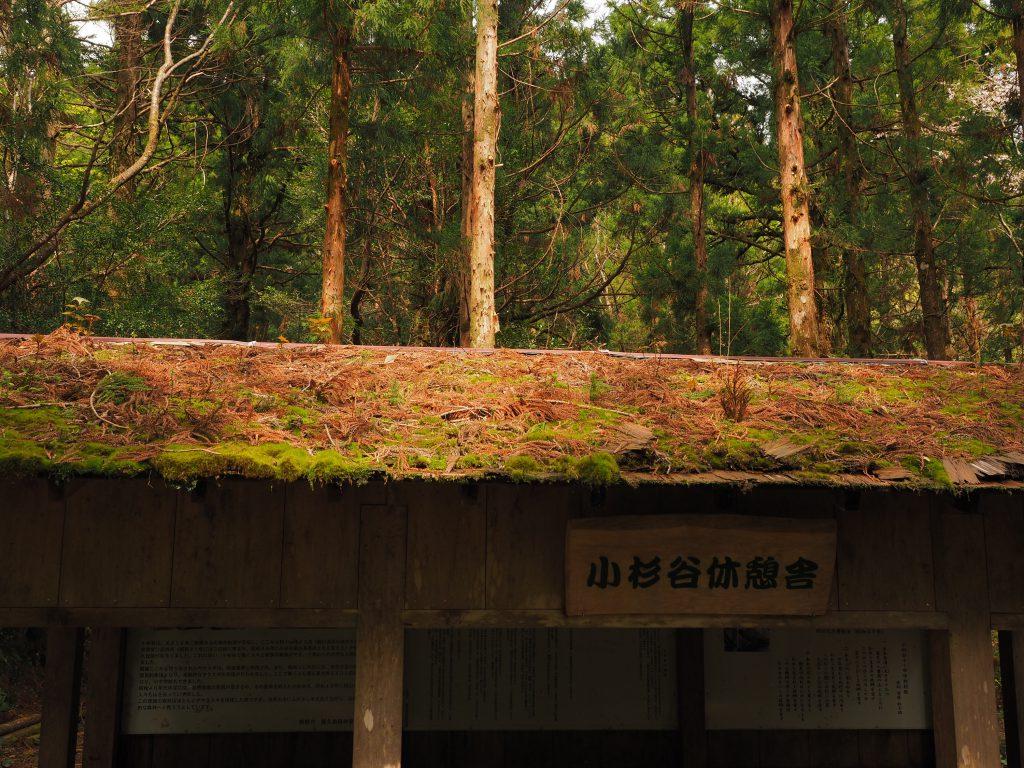小杉谷の東屋