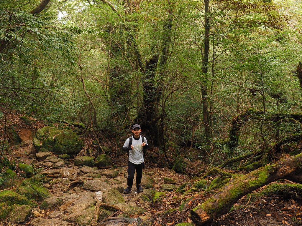 白谷雲水峡の奉行杉コースを回って下山