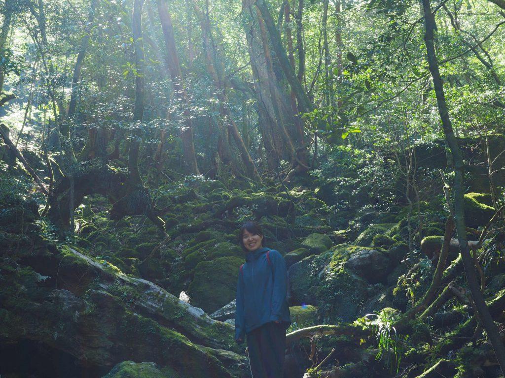白谷雲水峡の奉行杉コースを歩く
