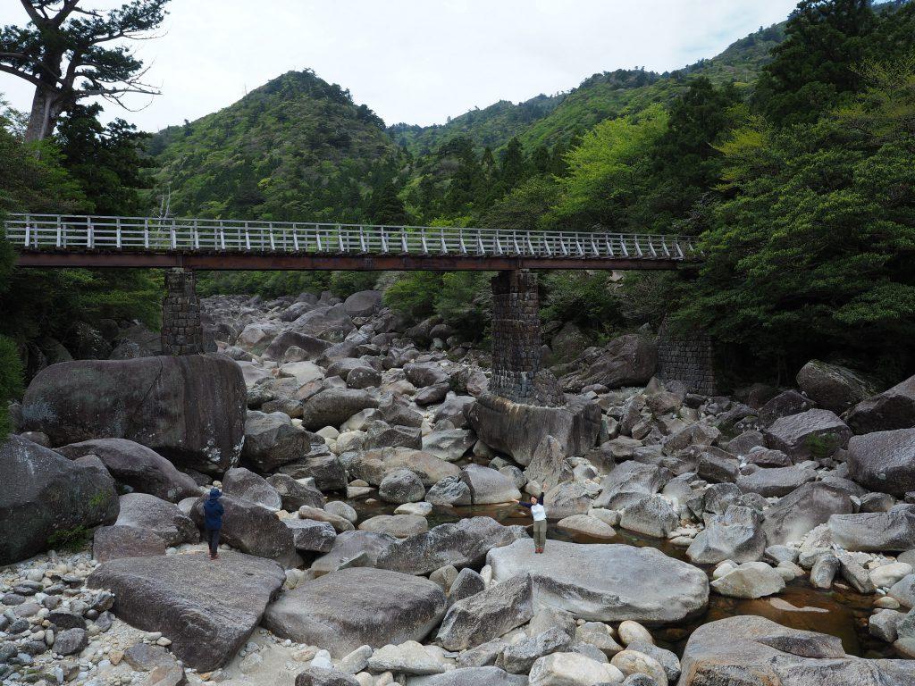 縄文杉コースの安房川
