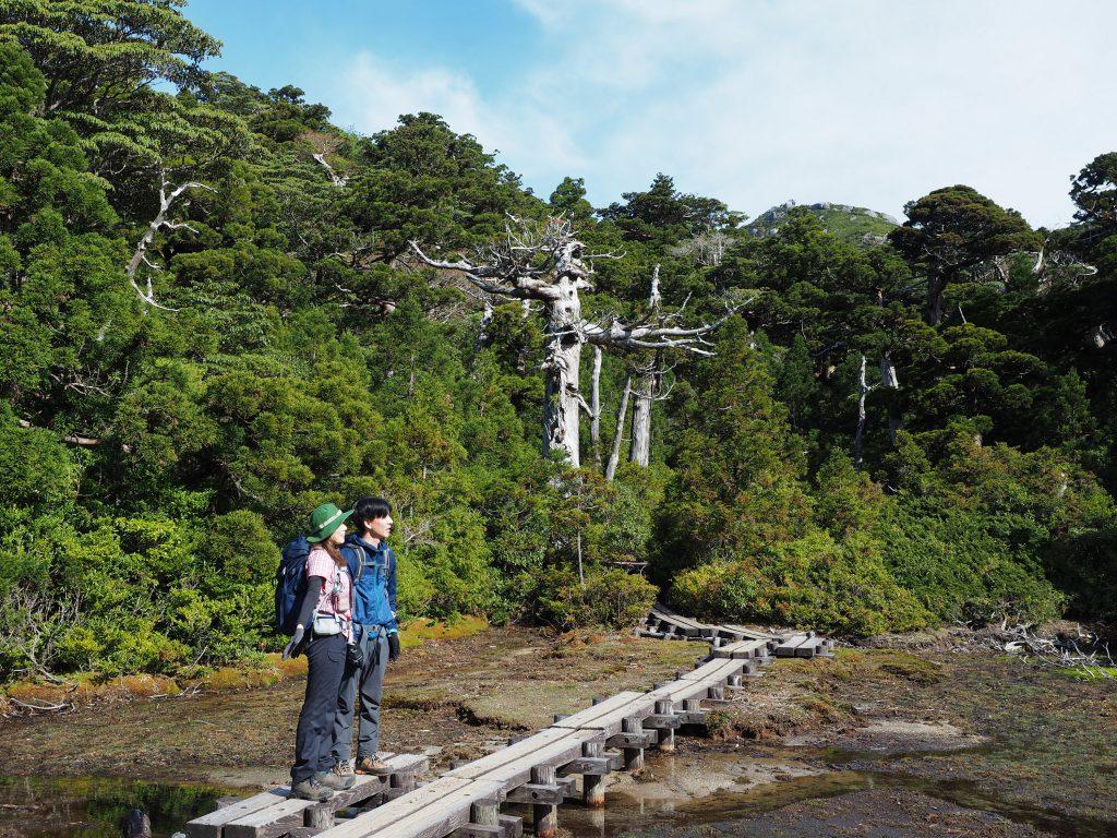 宮之浦岳コースの小花之江河