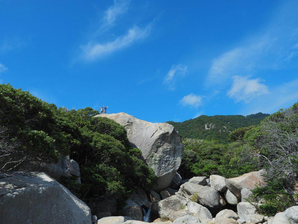 世界自然遺産の森を望む展望所