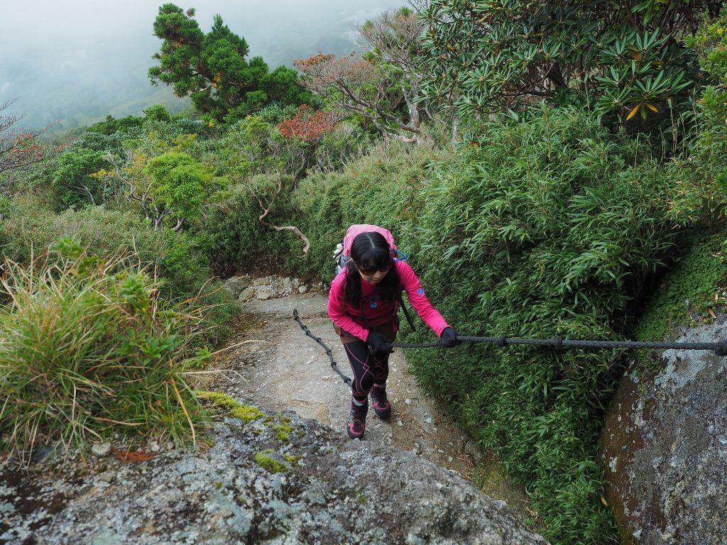 ロープ場を登る