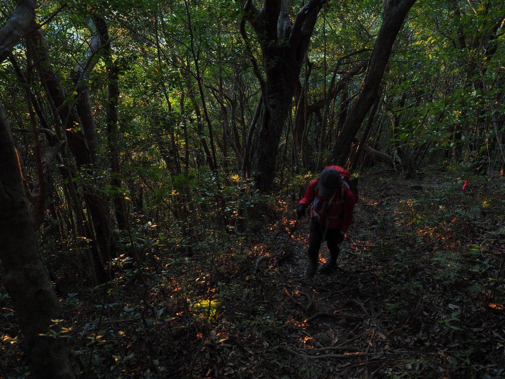 モッチョム岳登山最初の急登
