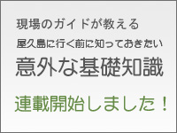 現場のガイドが教える「屋久島に行く前に知っておきたい意外な基礎知識」