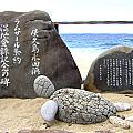 海亀・ナイトツアーガイド